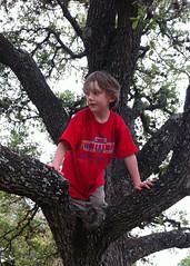 Asher climbing a tree