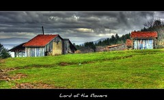 Saralan Yaylas...      (LORD OF THE FLOWERS) Tags: cloud house green forest turkey spring 1855mm hdr bolu xxxxxxxx canonrebelxti anawesomeshot mygearandme saralanyaylas001h