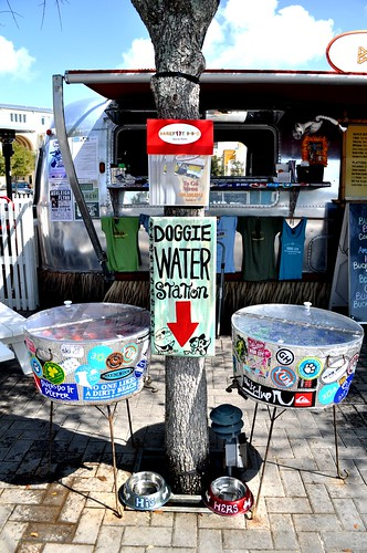 Doggie Water Hole, Seaside, Fla.