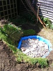 Garden 01 April