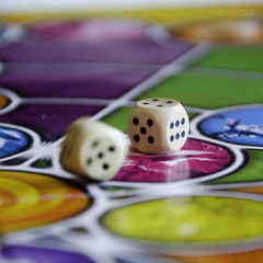 Trivial Pursuit (so - (Alternating Current)) Tags: dadi trivialpursuit 2011 giocodatavola d7000 mamilosa micheledefilippo