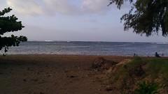 IMAG0089 (Anna Kipervaser) Tags: ocean friends nature birds garden island hawaii peace magic jungle kauai brilliant pele archipelago monkseal