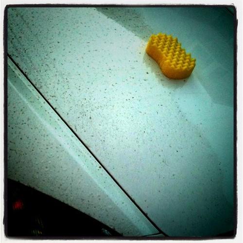 車も花粉症になりそう。エアクリーナー大丈夫かな?