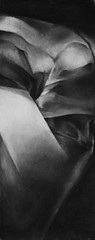 BY6 (claralieu2) Tags: shadows drawing charcoal freshman risd
