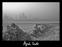 taj mahal agra Inde (franchab) Tags: voyage photo du monde wwwfranchabphotographefr
