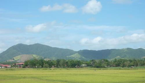 Panay-Roxas-Estancia-Iloilo (28)