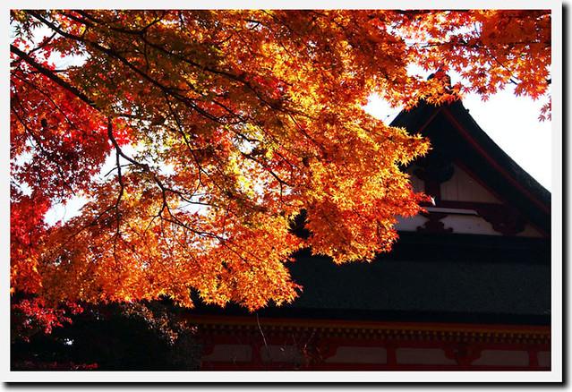 20101120_091329_談山神社_神廟拝所