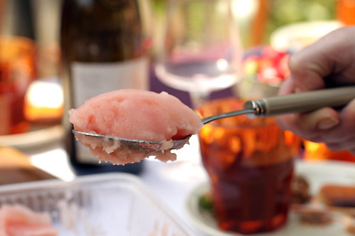 grapefruit campari sorbet