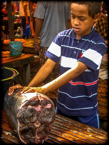 Fish Market, Ende, Lombok