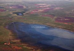 Broken Hill after the rains (45) (Paula McManus) Tags: plane flood australia aerial mining newsouthwales outback opal whitecliffs floods brokenhill wetland menindee dugouts paulamcmanus