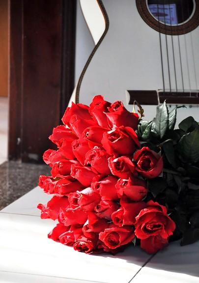 rosesSep9-2010 (21)