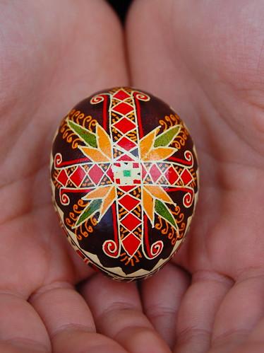 Jessica's egg