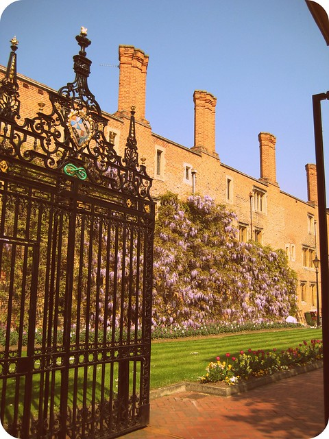 cambridge 3