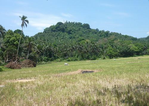 Mindoro-Sabang-Calapan (11)