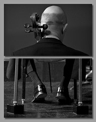 cello player dip (MyArtistSoul) Tags: bw feet back concert diptych head player cello zw 7432 vmf 70200mmf28 venturamusicfestival chairblocks