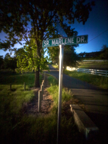 Sr. Marlene Dr.