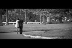 Streets Of Cannes: They 4 (Fabrice Drevon) Tags: street woman man tree film look grass asian restaurant dc nikon couple pigeon perspective like dirty palm photowalk f2 cinematic gaze rounded 135mm 235 cinemascope d700 fabricedrevon