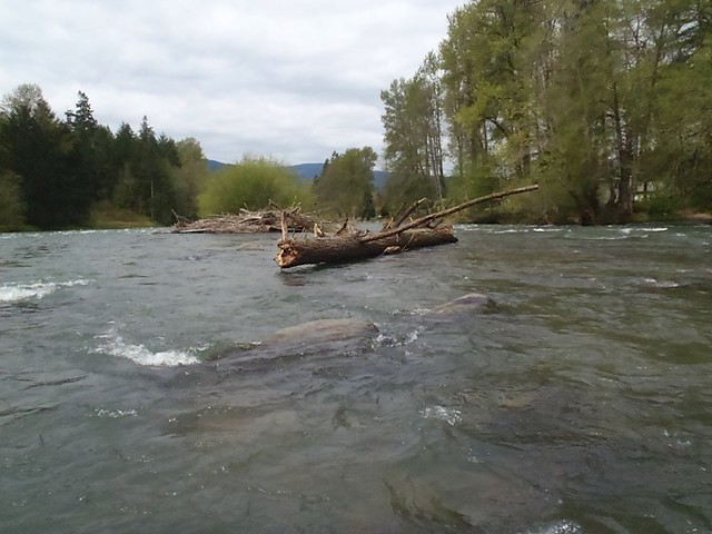 middle fork of the willamette