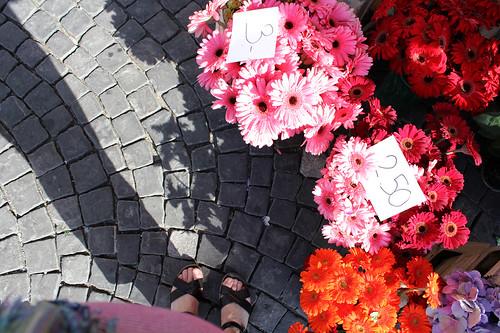 wegrub: market flowers