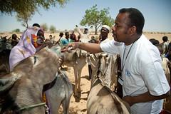 Humanitarian Operation in Darfur (Albert Gonzalez Farran) Tags: africa nepal sudan un unitednations darfur unhcr onu peacekeepers fao ocha cascosazules nacionesunidas elfasher springbasket nacionsunides albertgonzalezfarran albertgonzaleznet cascosblaus
