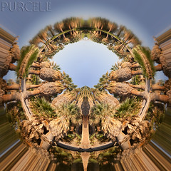 Agua Caliente Stargate! (Jim Purcell) Tags: arizona usa digital tucson photograph government dslr aguacalientepark parksrecreation pimacounty pentaxk10d tucsonphotographer pimacountynaturalresources tamronspaf2875mm28xrdildif