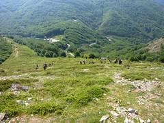Les groupes dans la montée à Punta Alla Corbajola