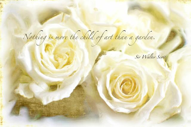 Gardening quote.