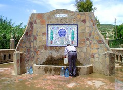 (habib kaki) Tags: eau algerie fontaine source medea  ruisseau  oued  khemis  berrouaghia  berrouaguia   karakach