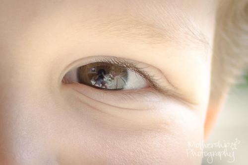 164:365 In his eyes