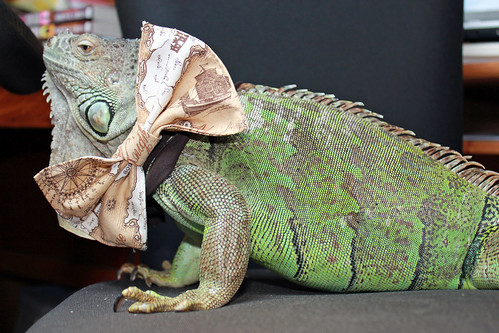 Dapper Dragon wishes you a happy Steampunk Day!
