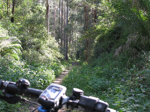 Wamuran Rail Trail