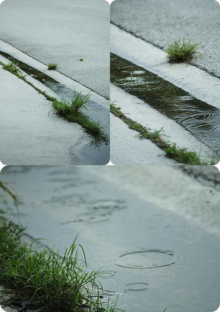 gutter ripple triptych