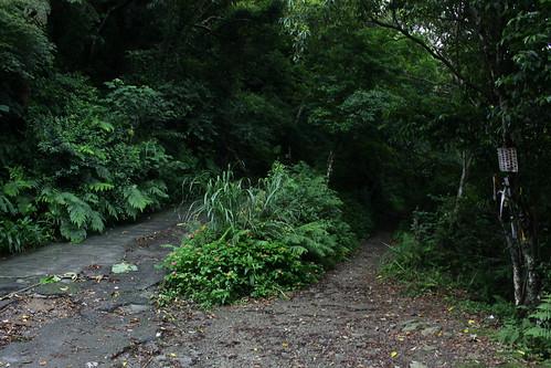新北市三峽雲森瀑布_02_2011.06.28