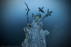 Ruhrgebiet (Sascha Gebhardt Photography) Tags: nikon nikkor d800 lightroom langzeitbelichtung vpu l01 2470mm leefilter