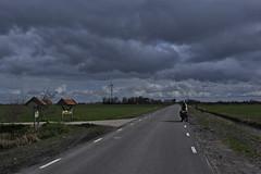 Friesland-04