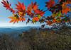 Gayasan Autumn (mishko2007) Tags: korea gayasannationalpark 1224mmf4 autumn