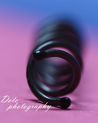macro project [3\60] (Dote []  [back!!]) Tags: pink canon flickr bokeh
