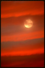 Super perigree moonrise Auckland (Zelda Wynn) Tags: sunset red newzealand nature rain weather clouds skyscape glow fullmoon auckland artgalleryofnsw cloudscape troposphere inspiredbyalfredstieglitz perigree zeldawynn zeldawynnphotography