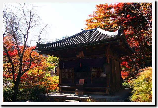 20101119_112959_長谷寺_大黒堂