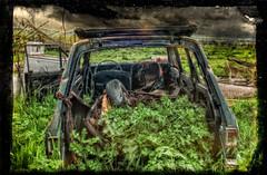 Now that's a smart car, look how Green. (Bryan Jaronik) Tags: abandoned overgrown rural photoshop nikon rust decay grunge rusty farmland crusty hdr texure carinterior d90 creativephotography livermorecalifornia nikond90 ruralexploring ruralex bryanjaronik