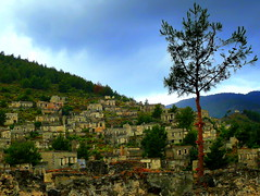 Trees in A Ghost Town              (Levissii,Turkey) (Butch Osborne) Tags: history abandoned turkey lumix war village hill eerie historic panasonic greece ghosttown lonely dmc history101 emptyhouses greekhistory dmcfz50 panasoniclumixdmcfz50 mygearandme mygearandmepremium treatyoflausanne levissii
