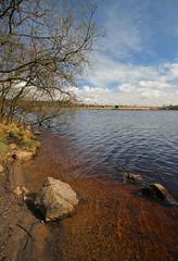 Llyn Llech Owain (EionaR.) Tags: lake wales llynllechowain carmarthenshire wfc wideangled