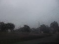 Garoa outonal (IgorCamacho) Tags: autumn fall rain lluvia chuva outono garoa