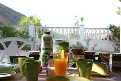 Breakfast in Bella Orcheta (Ginas Pics) Tags: blue espaa food smart breakfast spain earlymorning espana breakfasttime ginaspics spainvalencia fooddisplay bellaorcheta bestofspain httpginanews05blogspotcom spanishfinca reginasiebrecht breakfastinaspanishfinca