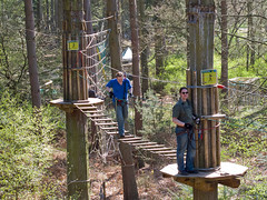 Go Ape! - suspension bridge
