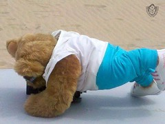 Day 85 - DS Buff Push Ups on Boardwalk