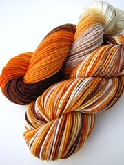 run fox run on bbr merino