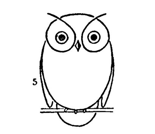 draw-an-owl1