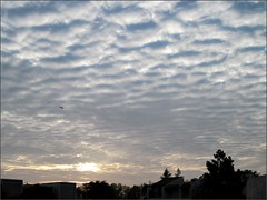 Thursday morning clouds 3
