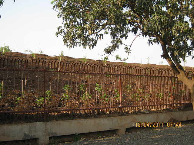 Fensing and plantation mounds for privacy, polution and protection - Visit to Nanded City Pune on Sinhagad Road
